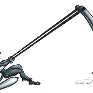 flying monkey illustration